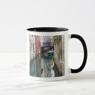 Italy, Venice, Reflections and Small Bridge of Mug