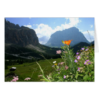 ITALY Wildflowers Dolomites Card