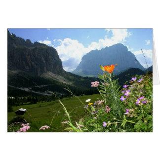 ITALY: Wildflowers, Dolomites Card