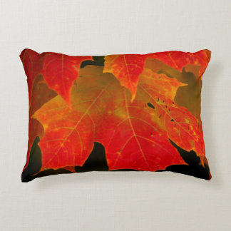 Itasca State Park, Fall Colors 2 Accent Pillow