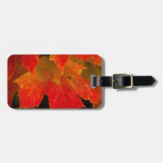 Itasca State Park, Fall Colors 2 Bag Tag
