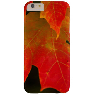 Itasca State Park, Fall Colors 2 Barely There iPhone 6 Plus Case