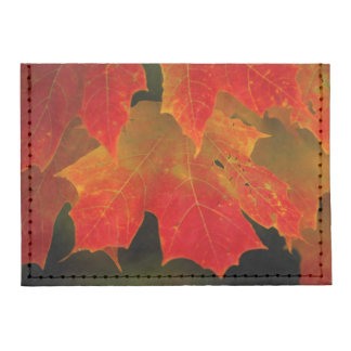 Itasca State Park, Fall Colors 2 Tyvek® Card Wallet
