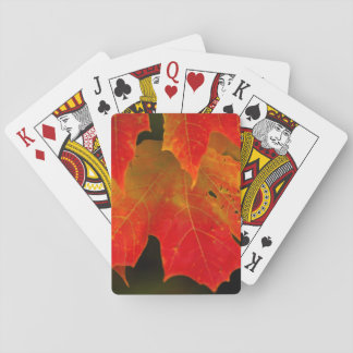 Itasca State Park, Fall Colors 2 Poker Deck