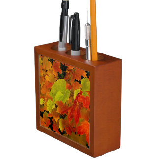 Itasca State Park, Fall Colors Desk Organizer
