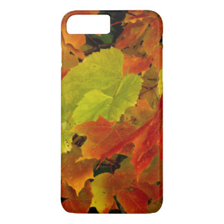 Itasca State Park, Fall Colors iPhone 7 Plus Case