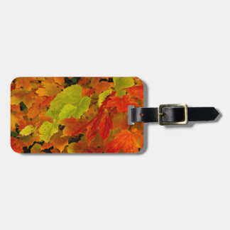 Itasca State Park, Fall Colors Luggage Tag