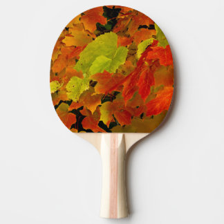Itasca State Park, Fall Colors Ping-Pong Paddle