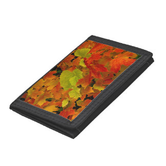 Itasca State Park, Fall Colors Trifold Wallets