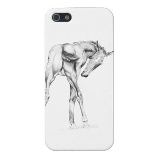 Itch iPhone 5 Cases
