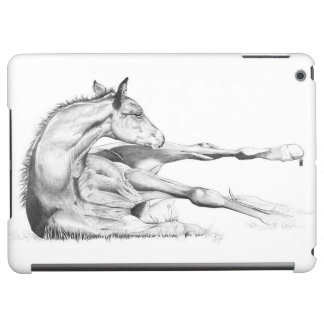 Itch Too iPad Air Cases