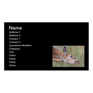 Itchy Fawn Business Card Templates