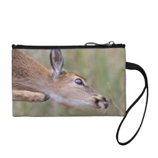 Itchy Fawn Change Purse