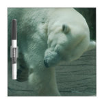 Itchy Polar Bear Dry-Erase Whiteboards