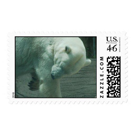 Itchy Polar Bear Stamp