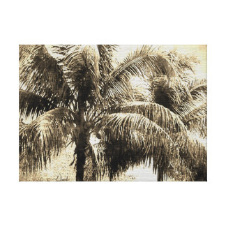 Item 041814 Palm - Winery Vintage Strong Study Canvas Print