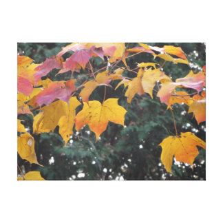Items featuring scenes from nature canvas print