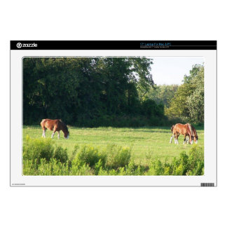 "Items featuring scenes from the farm 17"" laptop skins"