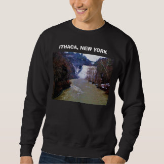 ITHACA, NUEVA YORK, BAJA camisa