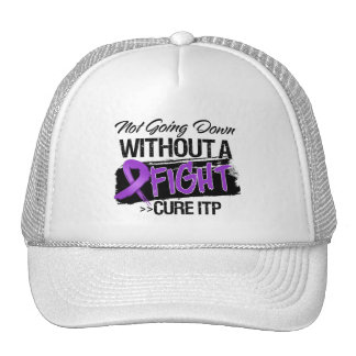 ITP Not Going Down Without a Fight Trucker Hat