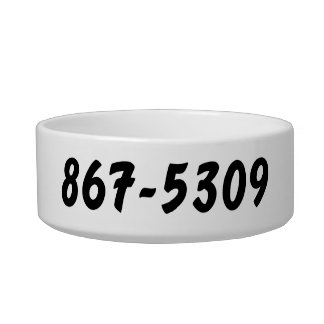 it's a 867-5309 thing bowl