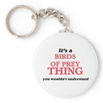 It's a Birds Of Prey thing, you wouldn't understan Keychain
