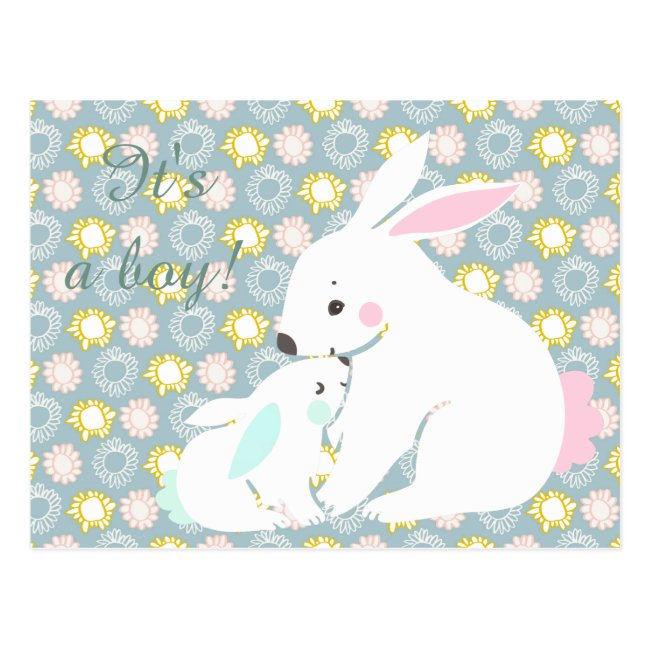 It's a boy! Cute mother & baby bunny Postcard