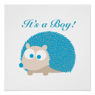 It's a Boy! Hedgehog Poster