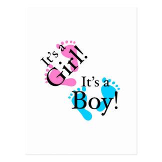 It's a Boy It's a Girl - Newborn Baby Post Card