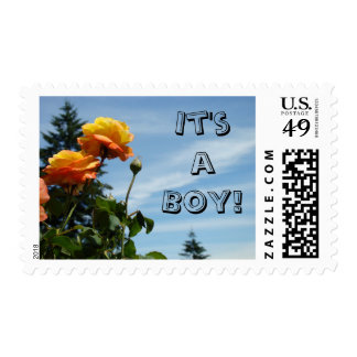 It's a Boy! postage stamps Blue Sky Summer