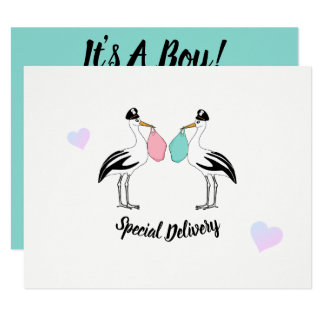 It's A Boy Stork Delivery Baby Shower Invitation