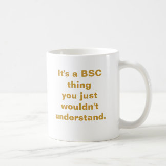 It's a BSC thing you just wouldn't understand. Mug