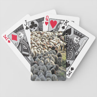It's a bummer sheep bottoms playing cards