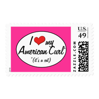 It's a Cat! I Love My American Curl Postage Stamp