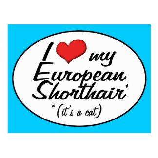 It's a Cat! I Love My European Shorthair Postcard