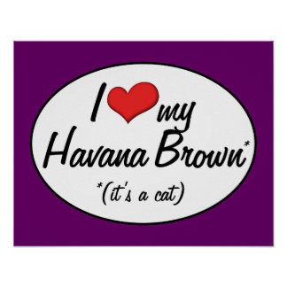 It's a Cat! I Love My Havana Brown Poster