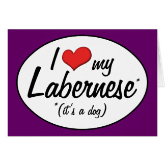 It's a Dog! I Love My Labernese Greeting Card