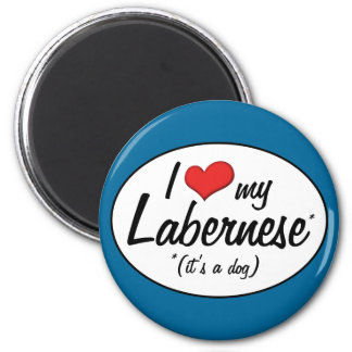 It's a Dog! I Love My Labernese 2 Inch Round Magnet