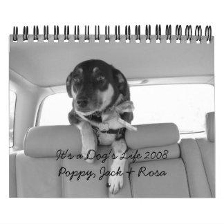 It's a Dog's Life 2008 Calendar