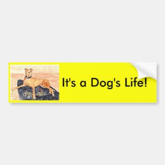 'It's a Dog's Life!' Bumper Sticker Car Bumper Sticker