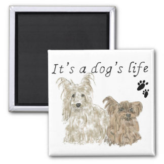 It's a dog's life funny cute Yorkie dogs Magnet