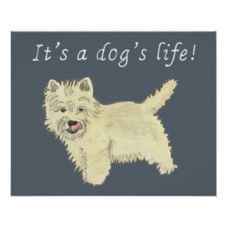 It's a dogs life, funny West Highland Terrier art Poster