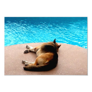 It's a Dogs Life ~ Invitation / RSVP 3.5x5
