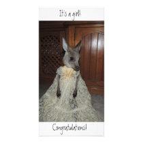 It's a girl! Congratulations! Birth card