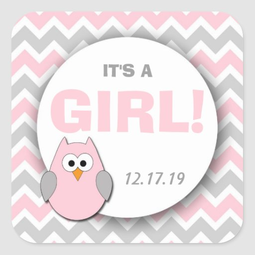 Its A Girl Owl Baby Shower Or Announcement Favors Square Sticker