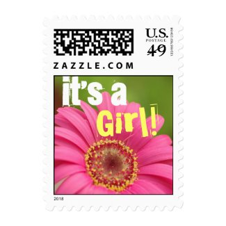 """It's a Girl!"" Pink Gerbera Daisy Postage Stamps"