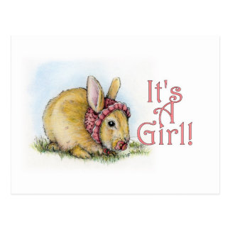 It's a Girl! Postcard