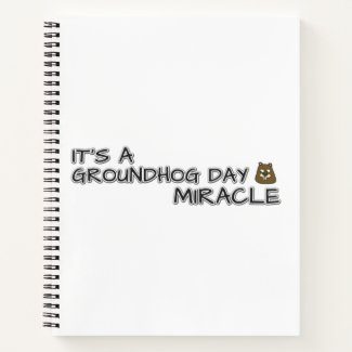 It's a groundhog day miracle notebook