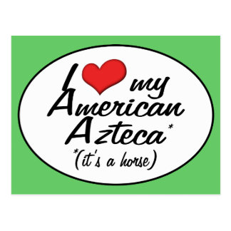 It's a Horse! I Love My American Azteca Postcard