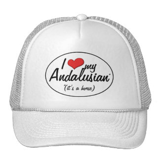 It's a Horse! I Love My Andalusian Hats